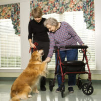 2 SIMPLE THINGS Parkinson's patients Can Do To Delay The Need For A Nursing Home